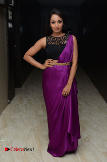 Actress Tejaswi Pictures in Saree at Rojulu Marayi Movie Audio Release Function 0072
