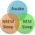 Apa itu REM dan NREM?