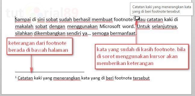 Cara cepat membuat footnote atau catatan kaki di word