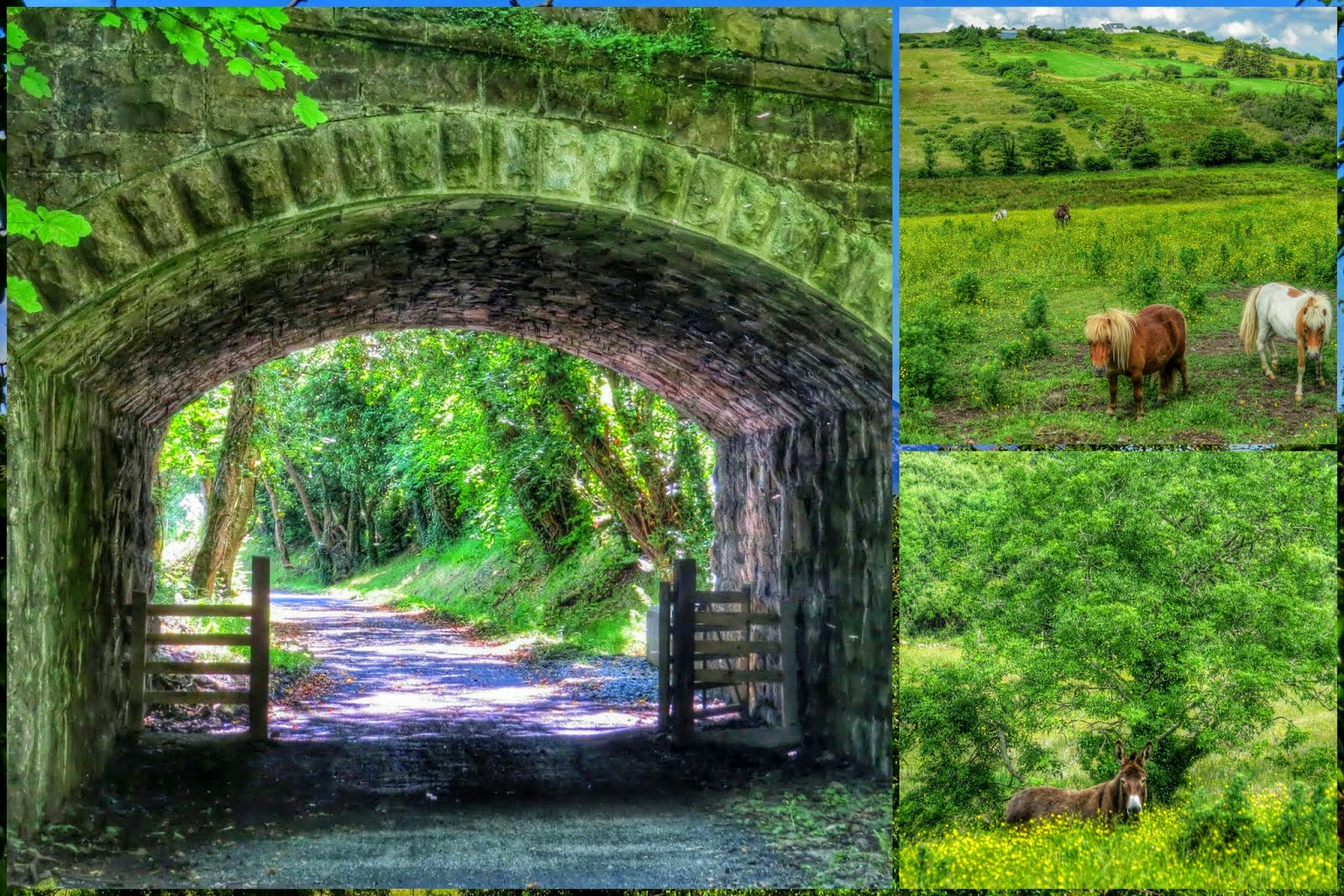 Great Western Greenway near Westport Ireland