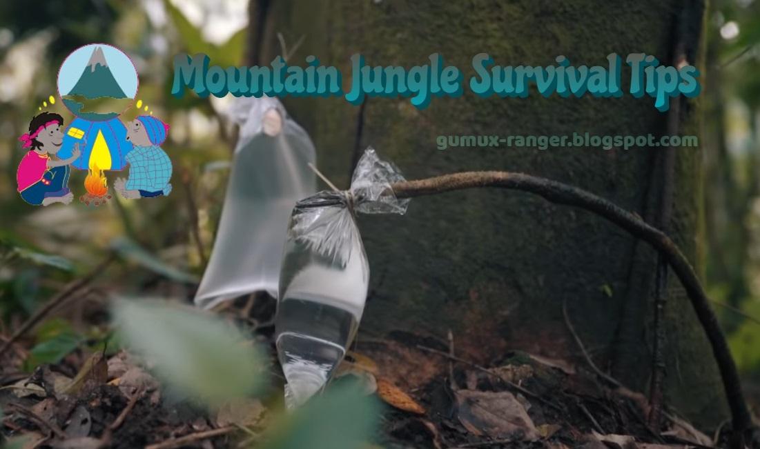 Mountain Jungle Survival Tips