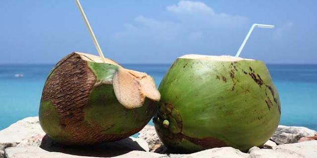 नारियल के अंदर पानी कहां से आता है, क्या यह सच में फायदेमंद होता है | NARIYAL ME PANI KAHAN SE AATA HE