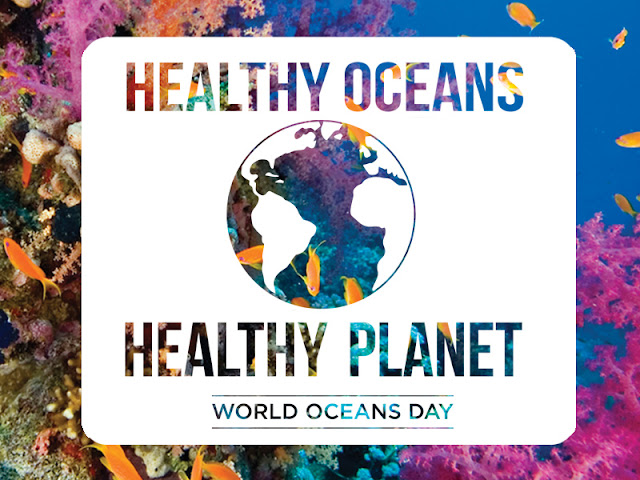 Healthy Ocean Day