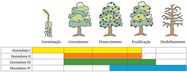 Germinação, Crescimento, Florescimento, Frutificação, Desfolhamento