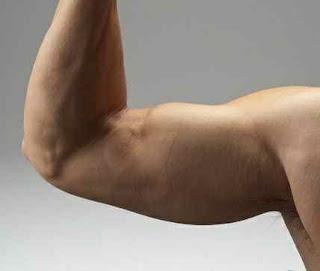 سبب تراكم الدهون في الذراعين وكيفية التخلص منها