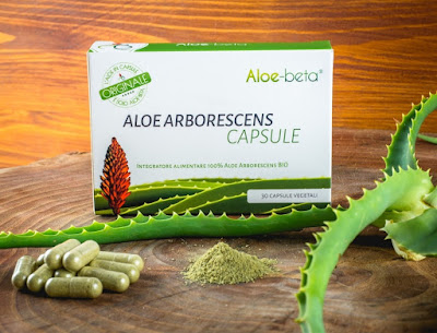 Creazione dell'Aloe Arborescens pura in capsule.