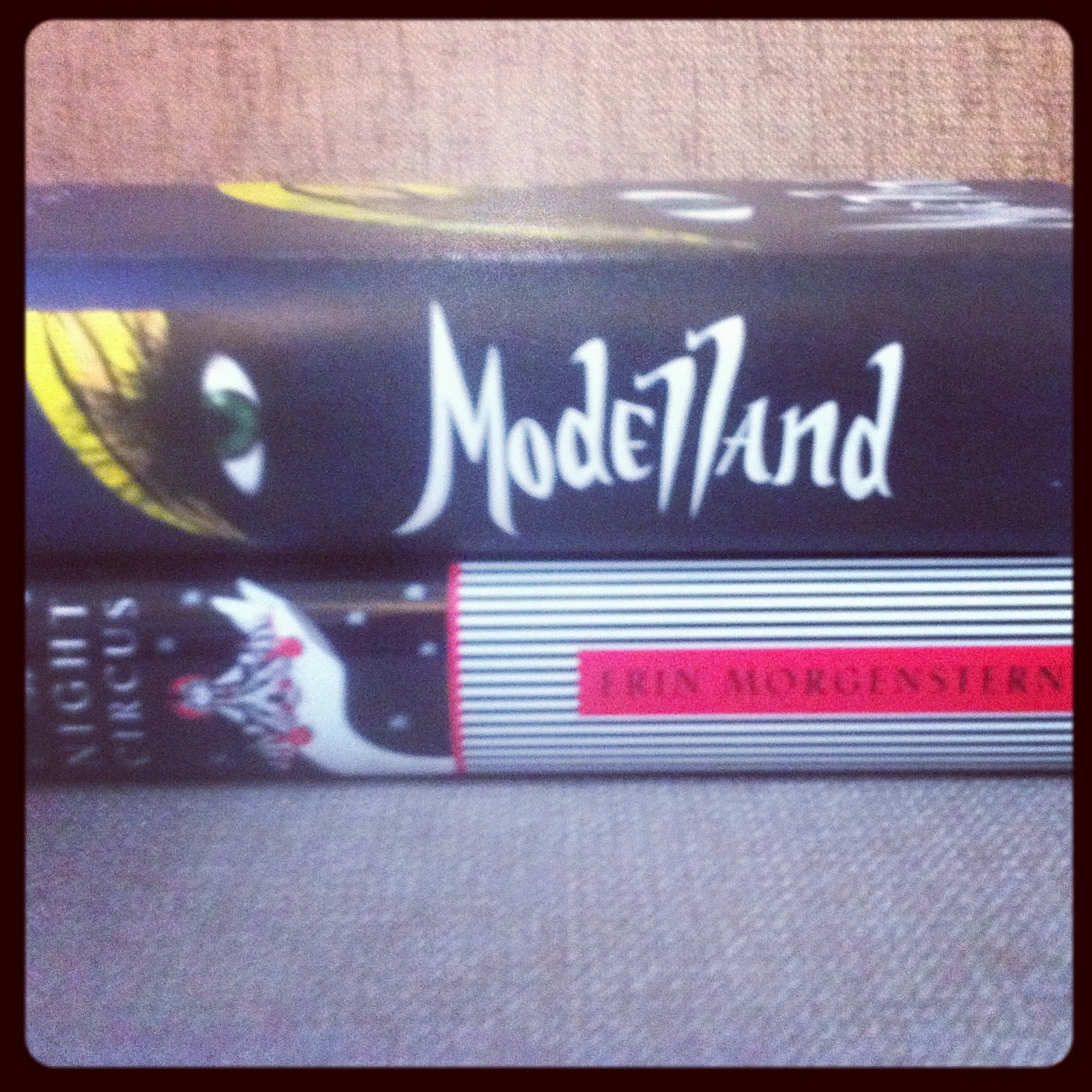 Tyra Banks Modelland: Tyra Banks Modelland Book 2