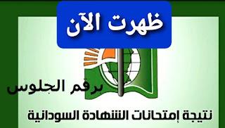 صدور اليوم واعلان نتيجة الشهادة السودانية 2021 الآن عبر موقع استخراج نتائج الشهادة الثانوية السودانية sudanresults.com برقم الجلوس