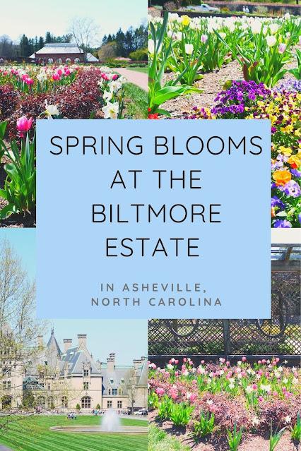 Spring Blooms at the Biltmore