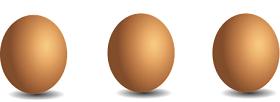 كم بيضة في اليوم للرجيم