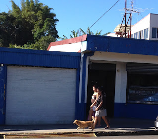 People and dog walking street in Puriscal