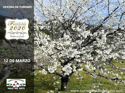 Estado de la floración 2020 en el Valle del Jerte