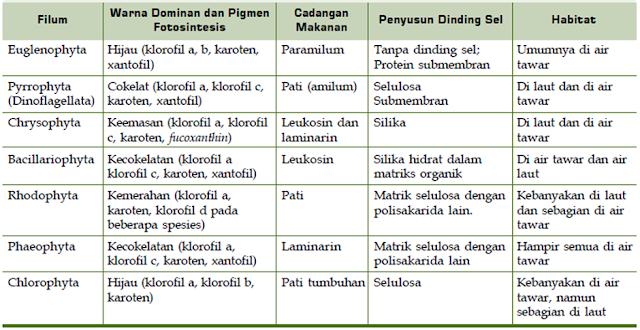 Tabel Klasifikasi dan Ciri Protista Mirip Hewan