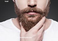 Logo TRND: diventa tester prodotti per la cura della barba