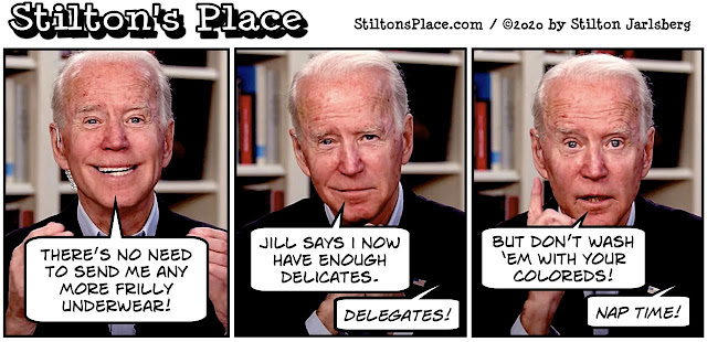 stilton's place, stilton, political, humor, conservative, cartoons, jokes, hope n' change, biden, joe biden, delegates, election