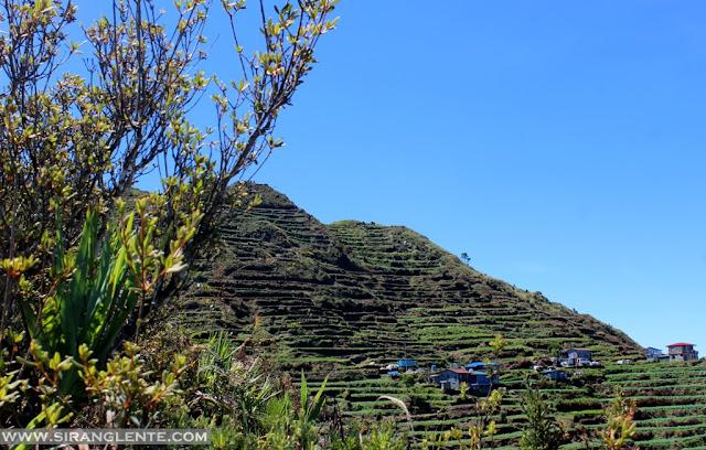 Mt. Timbak summit