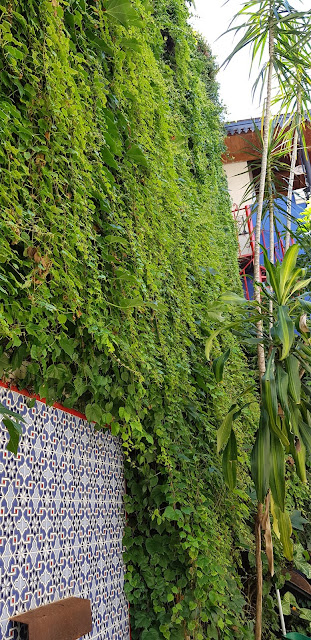 vertical garden with real plants