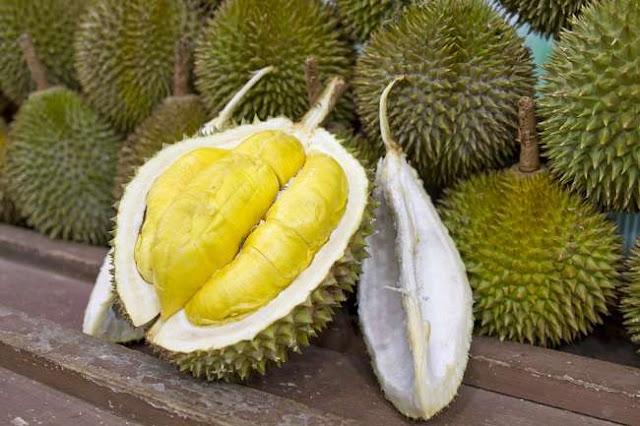Ini Manfaat Buah Durian bagi Kesehatan Tubuh Anda