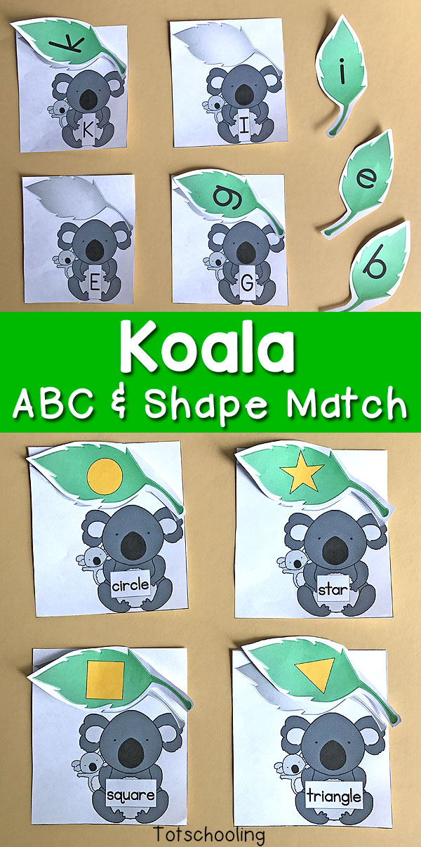 FREE Koala bear themed Alphabet and shape matching for preschool and kindergarten. Kids will love to match uppercase and lowercase letters as well as shape words to shapes. Perfect for an animal theme or Australia unit.
