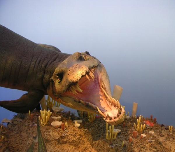 Dakosaurus , salah satu predator teratas di lautan selama sisa jaman Jurassic