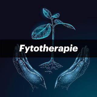 Fytotherapie kruidengeneeskunde