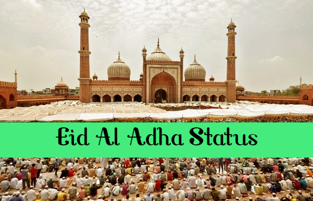 Eid al Adha 2019 Wishes, Messages, Quotes, Status, Greetings, Shayari, Images, Wallpapers, Pictures