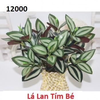 Phu kien hoa pha le o Nguyen Trai