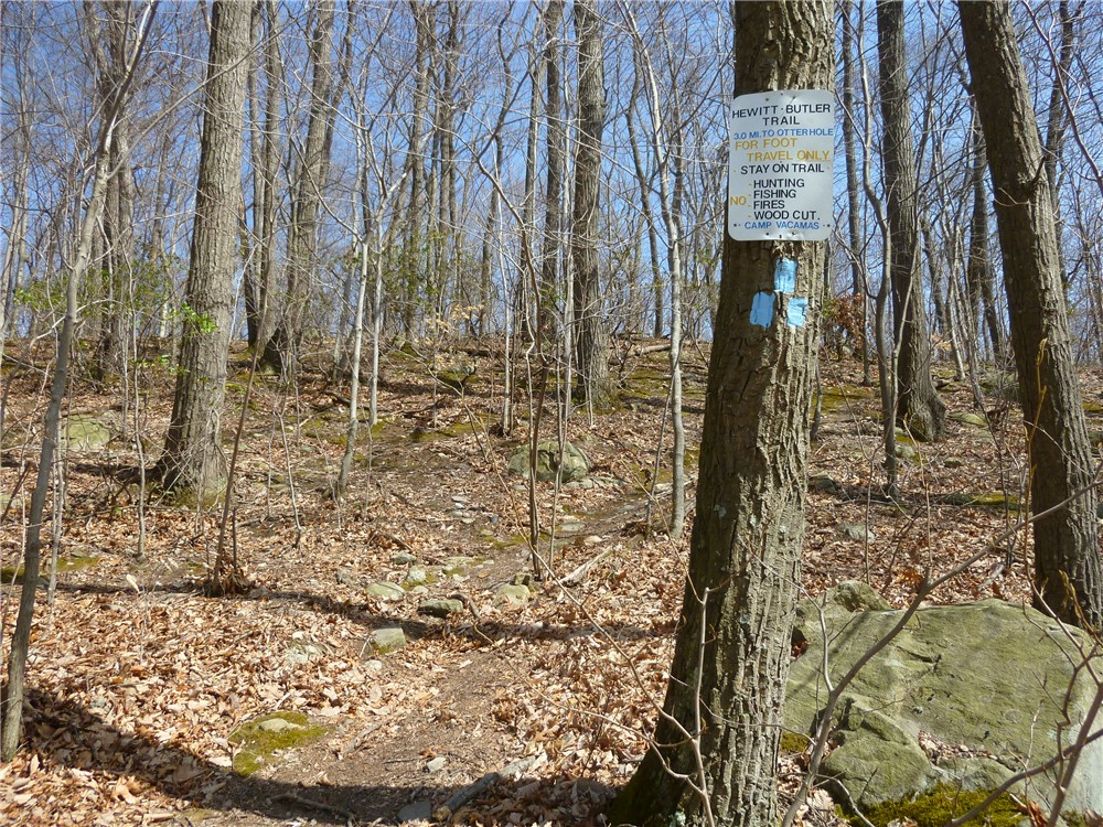 Gone Hikin Norvin Green State Forest Nj Osio Rock And