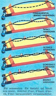 Harmonik Nedir? Nasıl Oluşur?