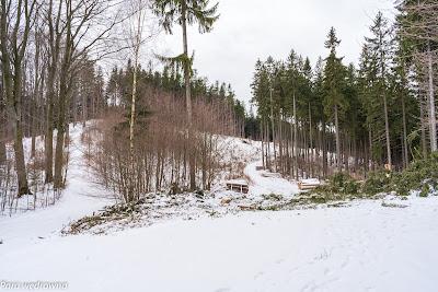 Przełęcz Polanka po zejściu ze szczytu Sokółki