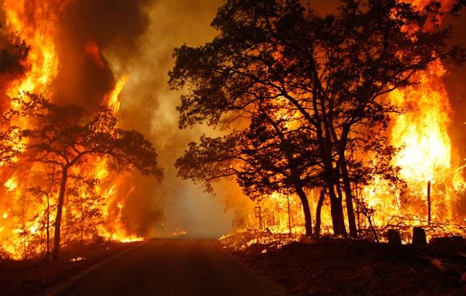 Az EU tűzoltó repülőgépeket, mentőautókat, helikoptereket küld Görögország, Észak-Macedónia, Albánia, Olaszország és Törökország kérésére
