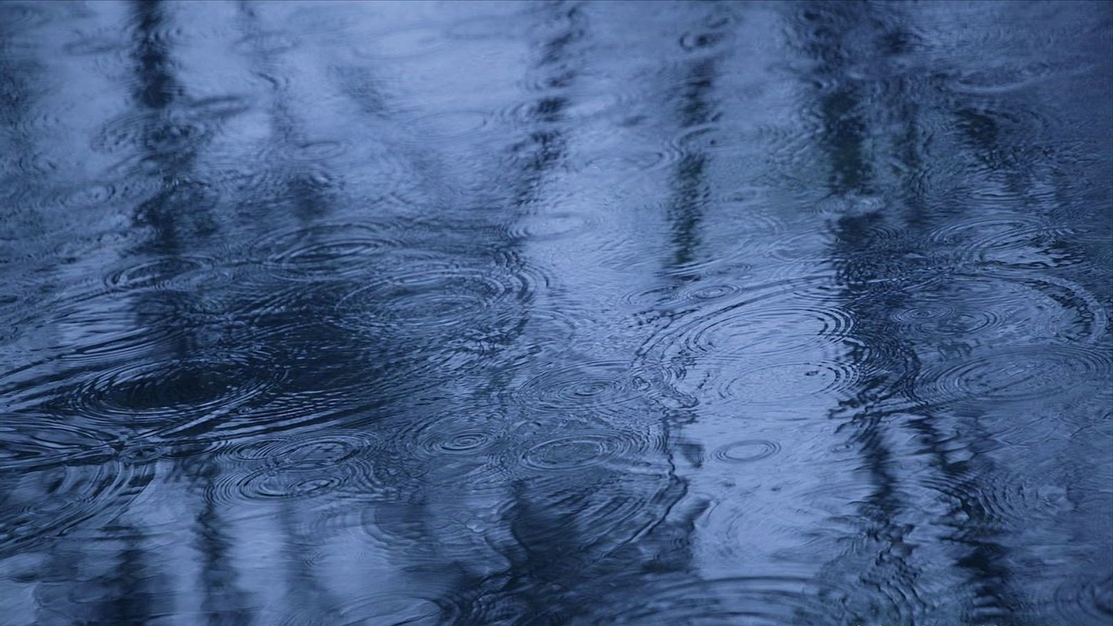 Your Wallpaper: Rainy Day Wallpaper