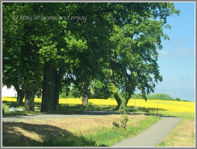 Schleswig-Holstein - unterwegs - stay at home and enjoy