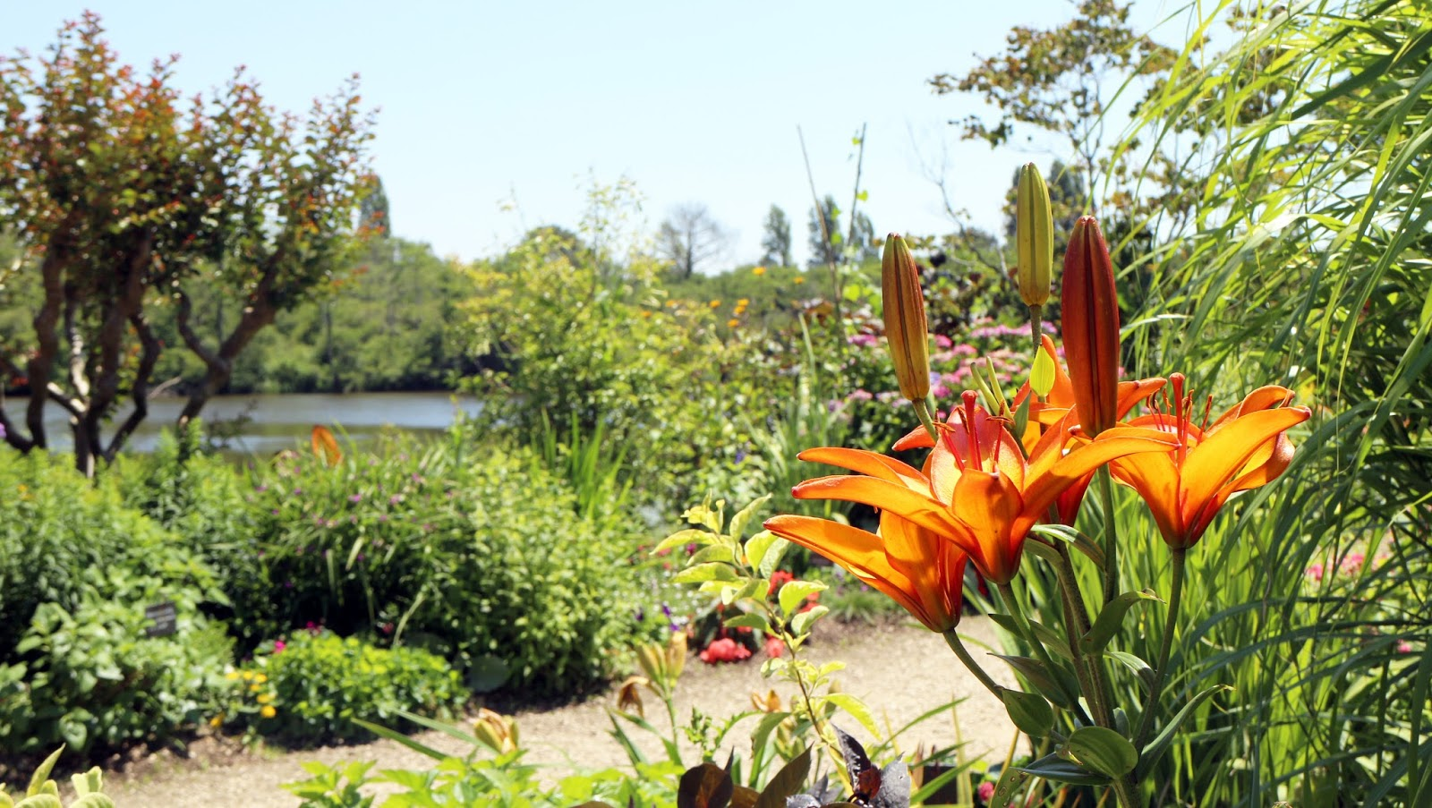 la promenade fleurie de mimizan | tukibomp - blog de bons plans