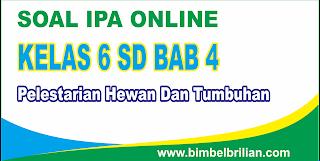Soal IPA Online Kelas 6 SD BAB 4 Pelestarian Hewan Dan Tumbuhan - Langsung Ada Nilainya