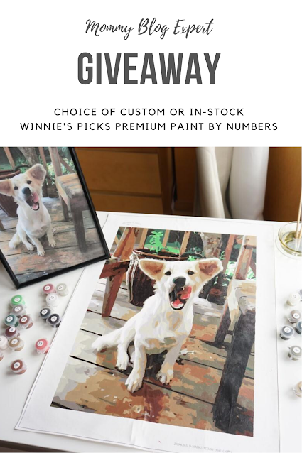 Winnies Picks Paint by Numbers Giveaway