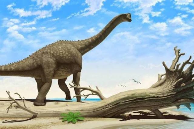 Museu Catavento inaugura sala de realidade virtual sobre dinossauros brasileiros
