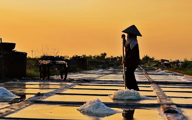 The beauty of salt fields in Vietnam 5