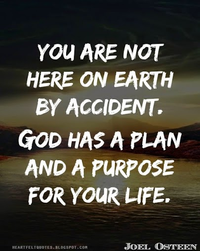 You Are Not Here On Earth By Accident. God Has A Plan And A Purpose For  Your Life.