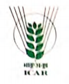 ICAR-Sugarcane Breeding Institute Recruitment 2020 Accounts Officer, Personal Assistant and Upper Divisional Clerk Vacancies