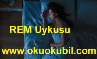 REM uykusu sırasında uyandığınızda Neler Oluyor?