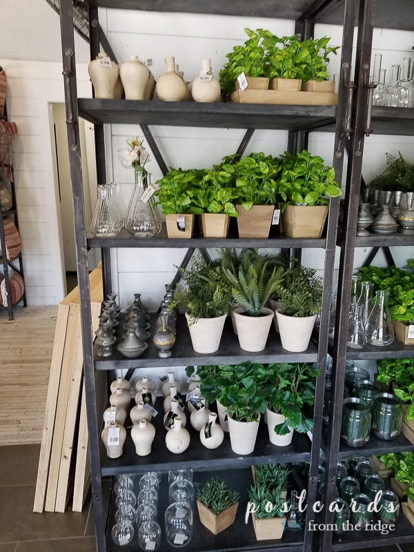 store shelves full of artificial plants and vases