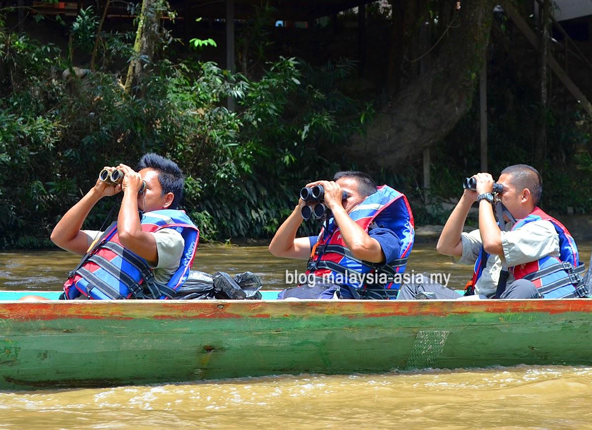 Birding in Sabah Borneo