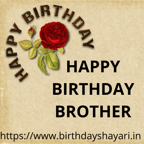 Terrific Happy Birthday Wishes In Hindi For Brother Birthday Status For Funny Birthday Cards Online Elaedamsfinfo
