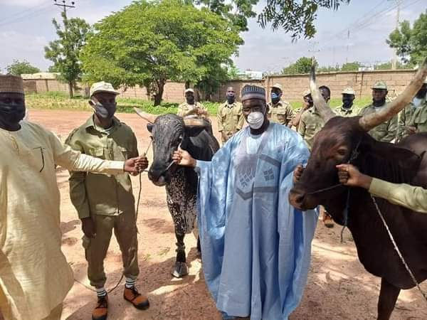 Buhari Donates Two Cows To Corpers In Katsina State For Sallah Celebration