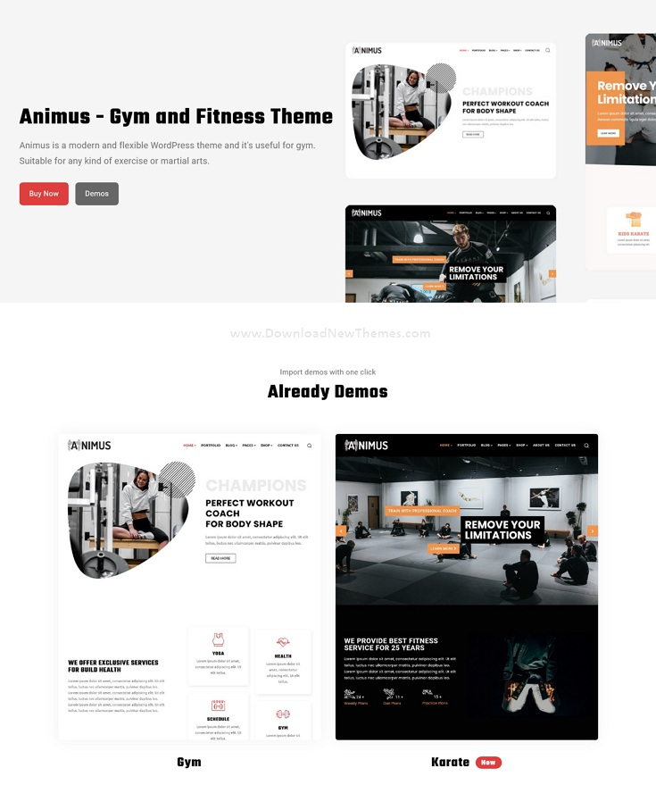 Gym and Fitness Website Theme