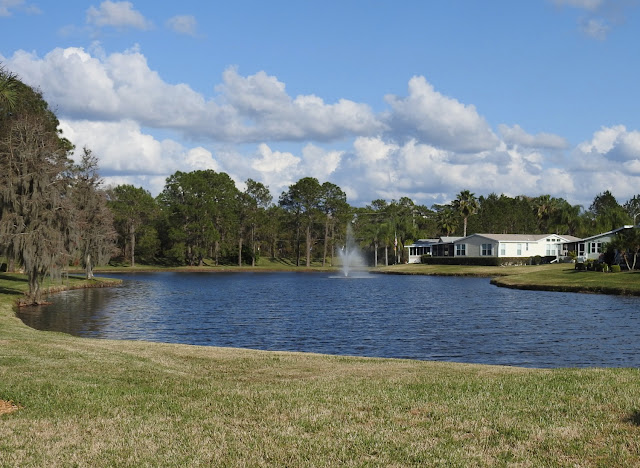 One of the many ponds in Cypress Lakes Resort, Lakeland, florida.