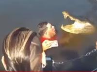 Mengerikan, Pria Ini Nekat Berenang Dengan Buaya Besar, Inilah yang Terjadi