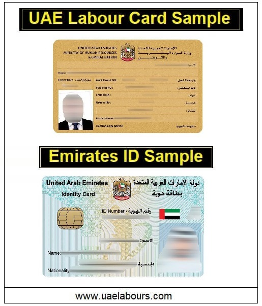 uae labor card sample, uae emirates id sample, uae resident card sample