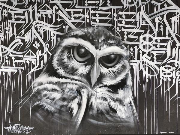 Manly Street Art by DMRC